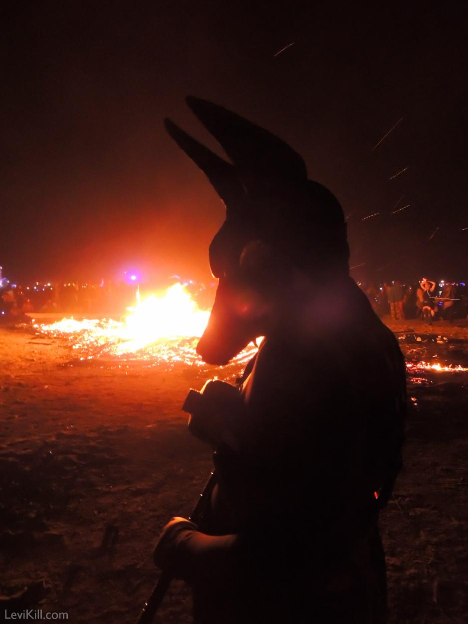 Anubis Burn 2012