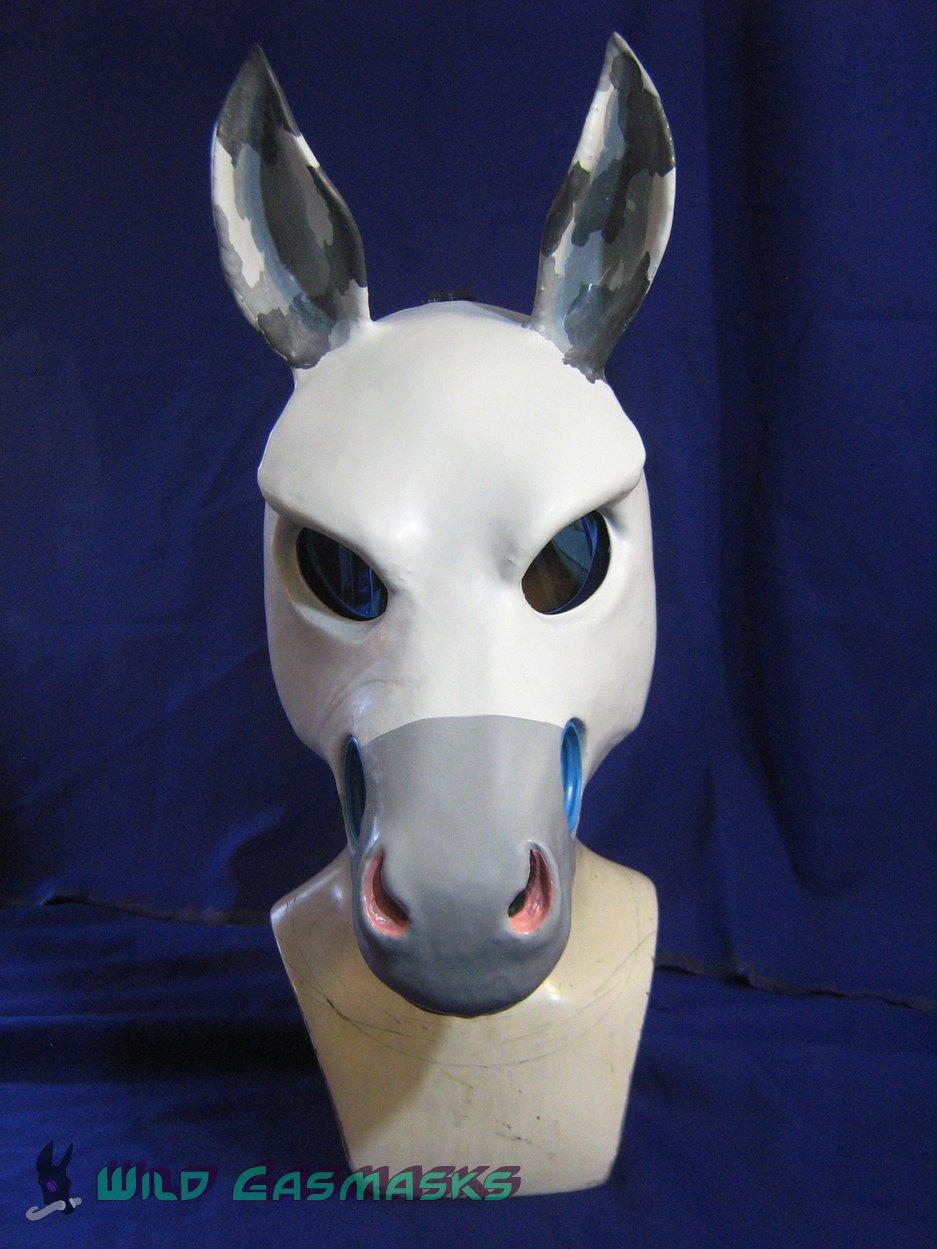 Paint Horse - Front View