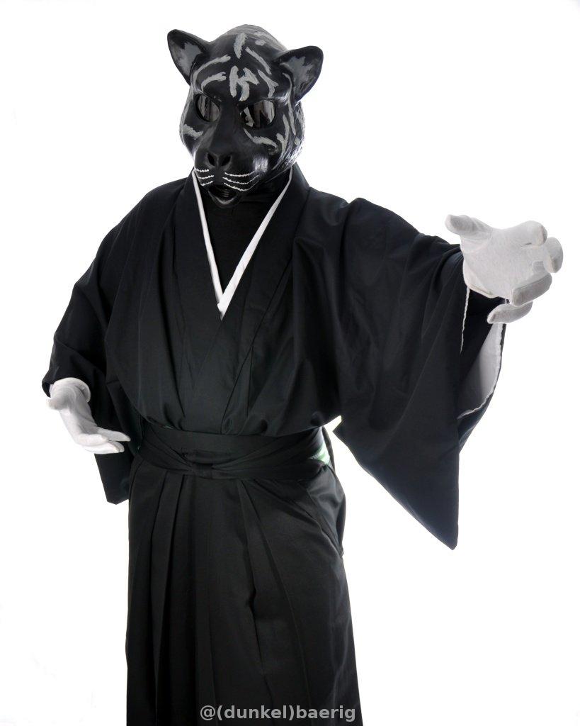 Kimono Corg 4