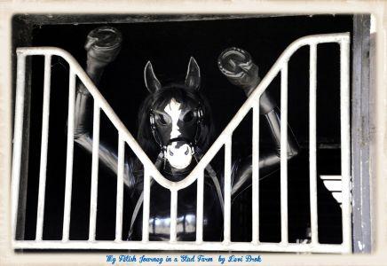 Gaelle Gate Portrait (Hooves Up)