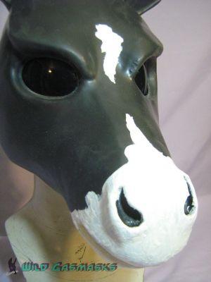 Painted Horse - Muzzle Detail
