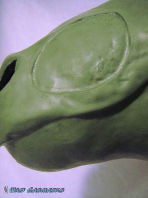 Saigon Komodo - Snout Detail